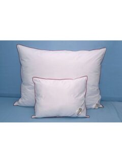 Down_pillow_duvet